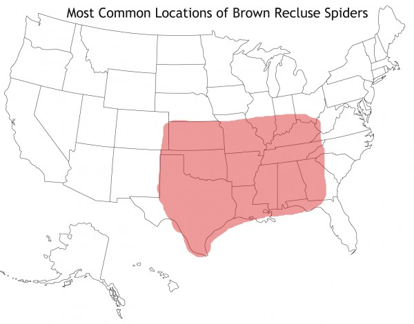 Brown Recluse Spiders by State
