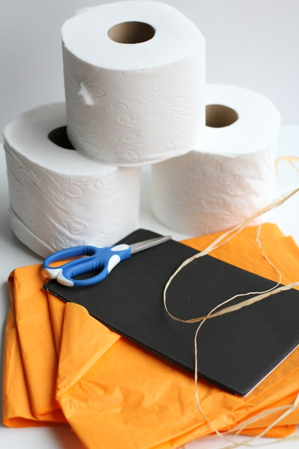 Materials for Toilet Paper Pumpkin