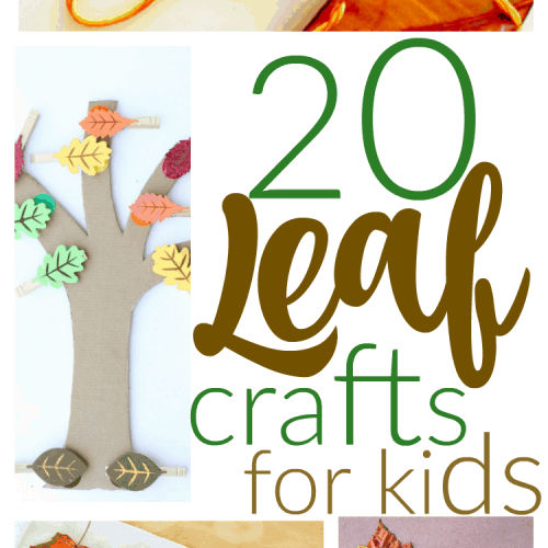20 Leaf Crafts