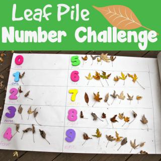 Leaf Pile Number Challenge