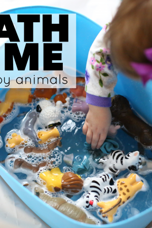 Bath Time for Toy Animals