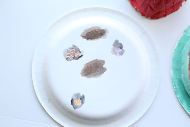Peter Rabbit Paper Plate Pop Up Garden I Can Teach My Child : rabbit paper plates - pezcame.com