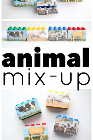 Animal Mix-Up LEGOs