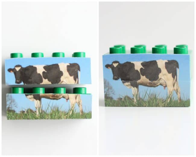 Cow Mix-Up LEGOs