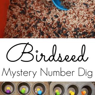 Birdseed Mystery Number Dig