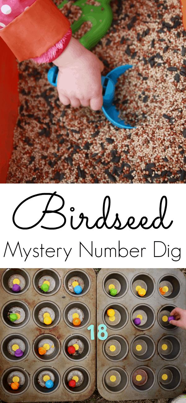 Birdseed dig