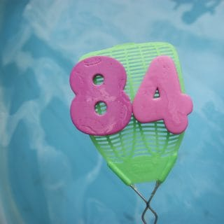 Fly Swatter Fun for the Swimming Pool