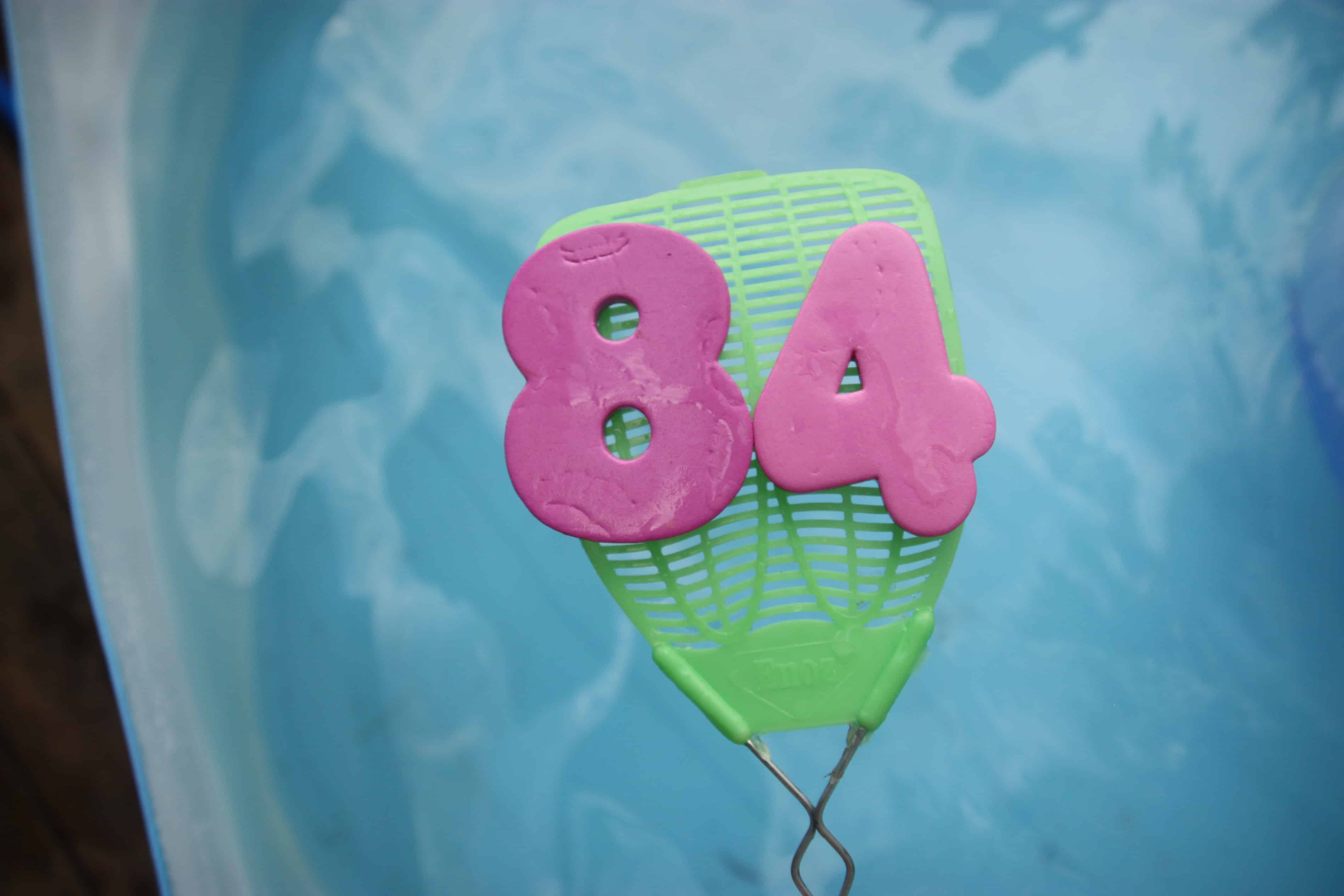 Fly swatter fun for the swimming pool i can teach my child Valentine pool swimming lessons