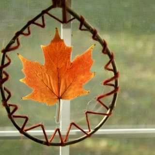 Laced Leaf Suncatchers
