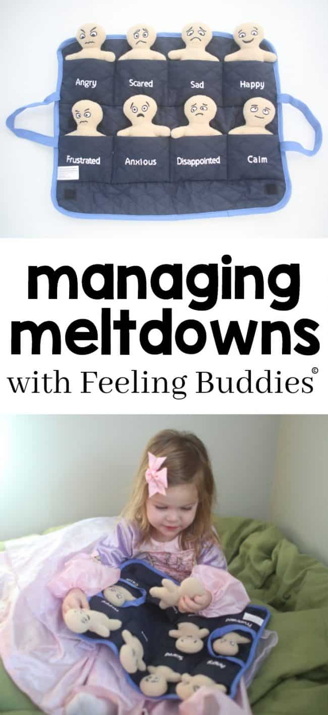Managing Meltdowns with Feeling Buddies