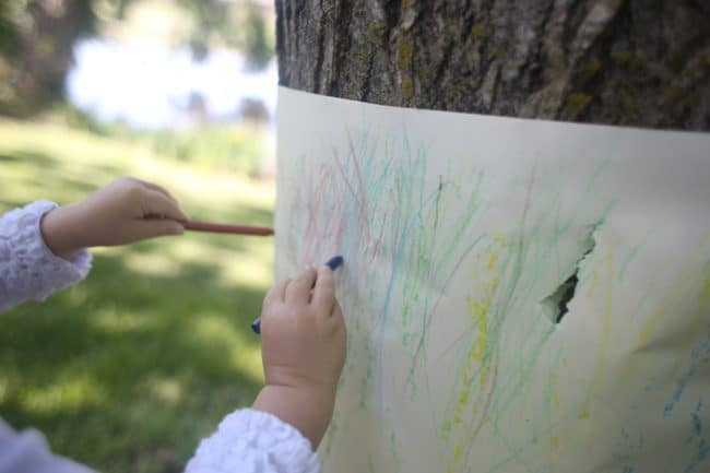 Outdoor Tree Bark Rubbings