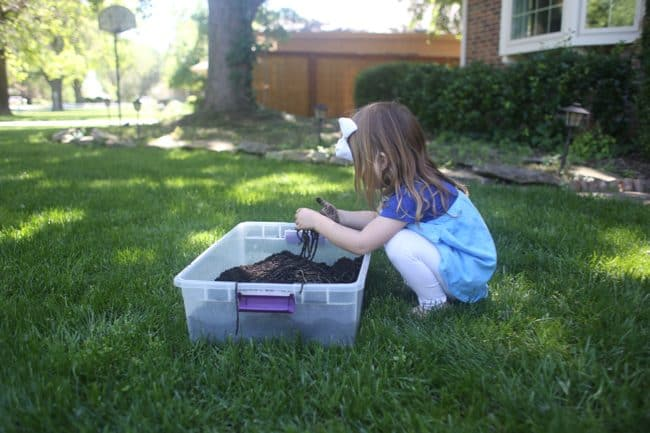 Dirt and Worms Sensory Tub