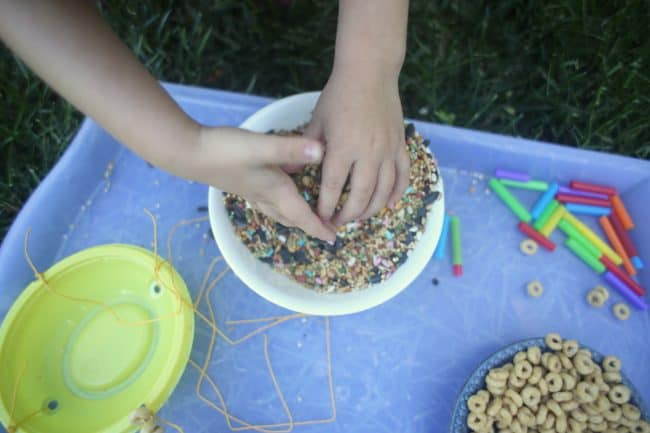 DIY Bird Feeder birdseed