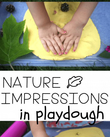 Nature Impressions in Playdough