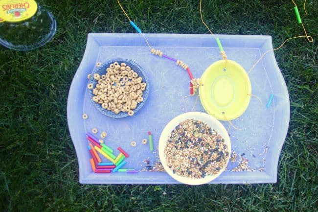 Supplies for DIY Bird Feeder