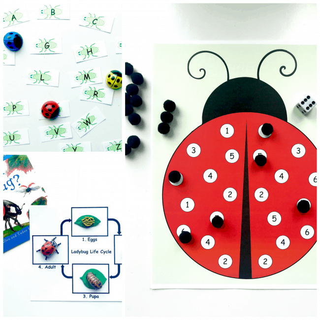 Are You a Ladybug Ivy Kids Kit