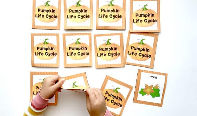 Pumpkin Life Cycle Printable Memory Game